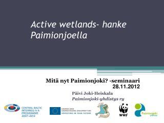 Active wetlands-  hanke Paimionjoella