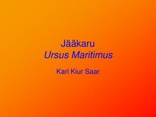 Jääkaru Ursus Maritimus