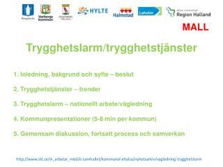 skl.se/vi_arbetar_med/e-samhallet/kommunal-ehalsa/nyhetsarkiv/vagledning-trygghetslarm