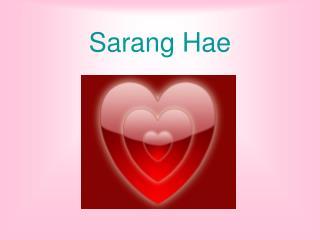 Sarang Hae