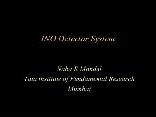 INO Detector System