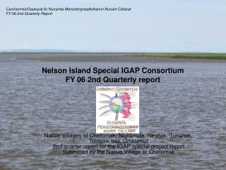 Nelson Island Special IGAP Consortium FY 06 2nd Quarterly report