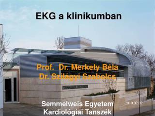 Prof.  Dr. Merkely Béla Dr. Szilágyi Szabolcs Semmelweis Egyetem Kardiológiai Tanszék