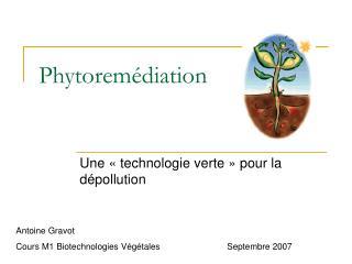 Phytoremédiation