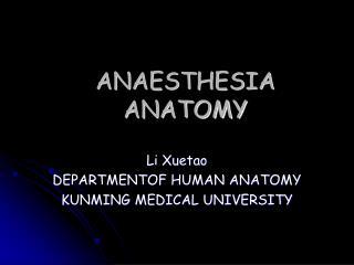 ANAESTHESIA ANATOMY