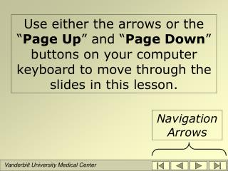 Use either the arrows or the  Page Up  and  Page Down  buttons on your computer keyboard to move through the slides in t