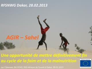 RFSNWG Dakar, 28.02.2013 AGIR – Sahel