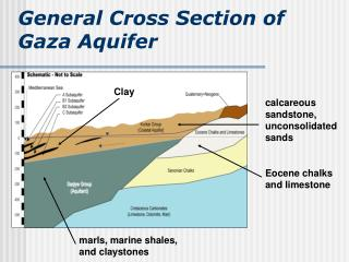 General Cross Section of Gaza Aquifer