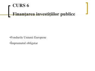 CURS 6 Finanţarea investiţiilor publice