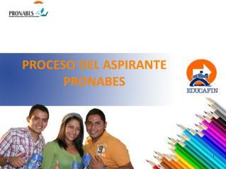 PROCESO DEL ASPIRANTE PRONABES