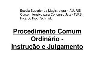 Procedimento Comum Ordinário -  Instrução e Julgamento