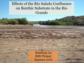 Effects of the Rio Salado Confluence on Benthic Substrate in the Rio Grande