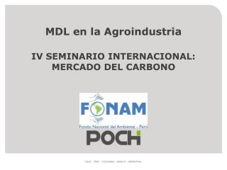 MDL en la Agroindustria IV SEMINARIO INTERNACIONAL: MERCADO DEL CARBONO