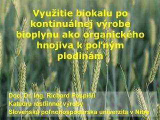 Využitie biokalu po kontinuálnej výrobe bioplynu ako organického hnojiva k poľným plodinám