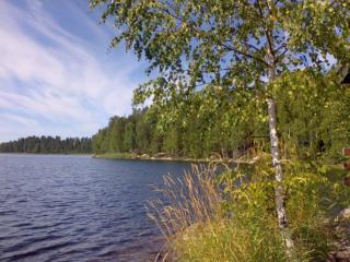 Haapaveden ja Virmutjoen tila 2013, esitietoja
