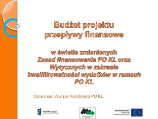 Budżet projektu przepływy finansowe