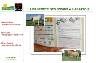 1 Dispositions    interprofessionnelles 2 Evolution   de la propret� des bovins 3 Plan d�action