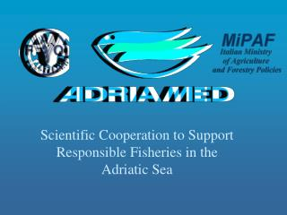 Scientific Cooperation to Support Responsible Fisheries in the Adriatic Sea