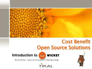Cost Benefit  Open Source Solutions