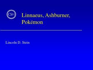Linnaeus, Ashburner, Pok é mon