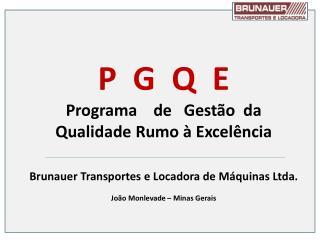 P  G  Q  E Programa    de   Gestão  da  Qualidade Rumo à Excelência