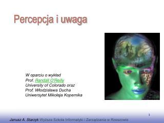 Janusz A. Starzyk  Wyższa Szkoła Informatyki i Zarządzania w Rzeszowie