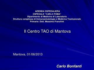 Il Centro TAO di Mantova Mantova, 01/06/2013 Carlo Bonfanti