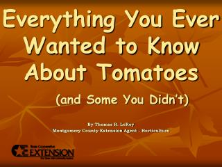 Everything You Ever Wanted to Know About Tomatoes