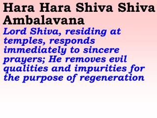 Shivakaami Priya Shiva Raja Lord Shivaraja is the beloved Lord of Goddess Shivakaami