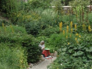 Eesti botaanilised kogud maailma taimeteaduses
