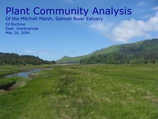 Of the Mitchell Marsh, Salmon River Estuary
