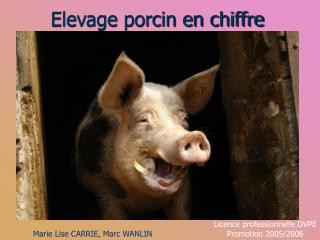 Elevage porcin en chiffre
