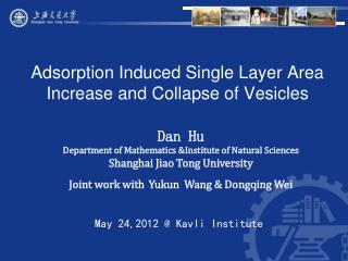 Adsorption Induced Single Layer Area Increase and Collapse of Vesicles