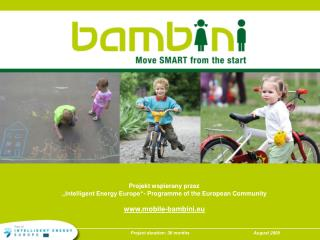 """Projekt wspierany przez """"Intelligent Energy Europe""""- Programme of the European Community"""
