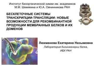 Люкманова Екатерина Назымовна Лаборатория биоинженерии белка ,  ИБХ РАН