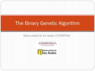The Binary Genetic Algorithm