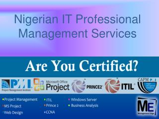 Nigerian IT Professional Management Services