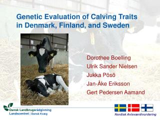 Genetic Evaluation of Calving Traits in Denmark, Finland, and Sweden