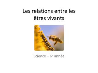 Les relations entre les êtres vivants