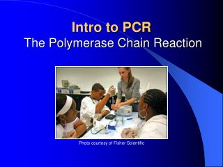 Intro to PCR  The Polymerase Chain Reaction