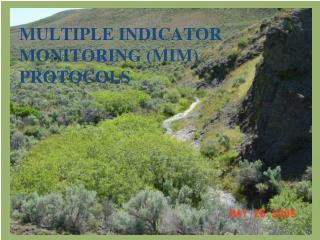 Multiple Indicator Monitoring (MIM) Protocols