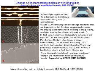 Chicago-Chile team probes molecular wrinkling/folding