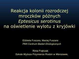 Re akcja kolonii rozrodczej mroczków późnych  Eptesicus serotinus na oświetlenie wylotu z kryjówki