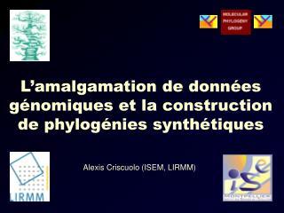 L'amalgamation de données génomiques et la construction de phylogénies synthétiques