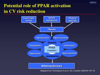 Potential role of PPAR activation  in CV risk reduction