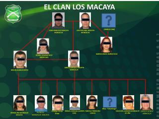 EL CLAN LOS MACAYA