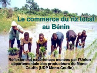 Le commerce du riz local au Bénin