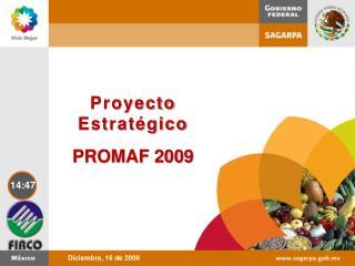 Proyecto Estratégico PROMAF 2009