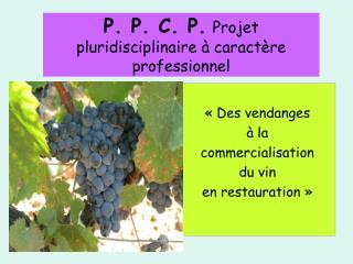 P. P. C. P. Projet pluridisciplinaire à caractère professionnel