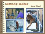 Dehorning Practices